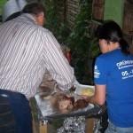 grillfest_20120703_1050812695